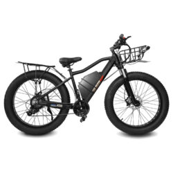 HEC-2000 electric bike with racks and fenders