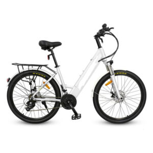 750 watt electric bike by Hardcore eCycles - color white