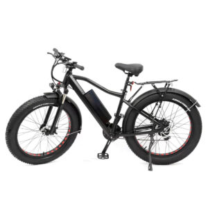hardcore electric bike 750 watt motor 60 volt battery
